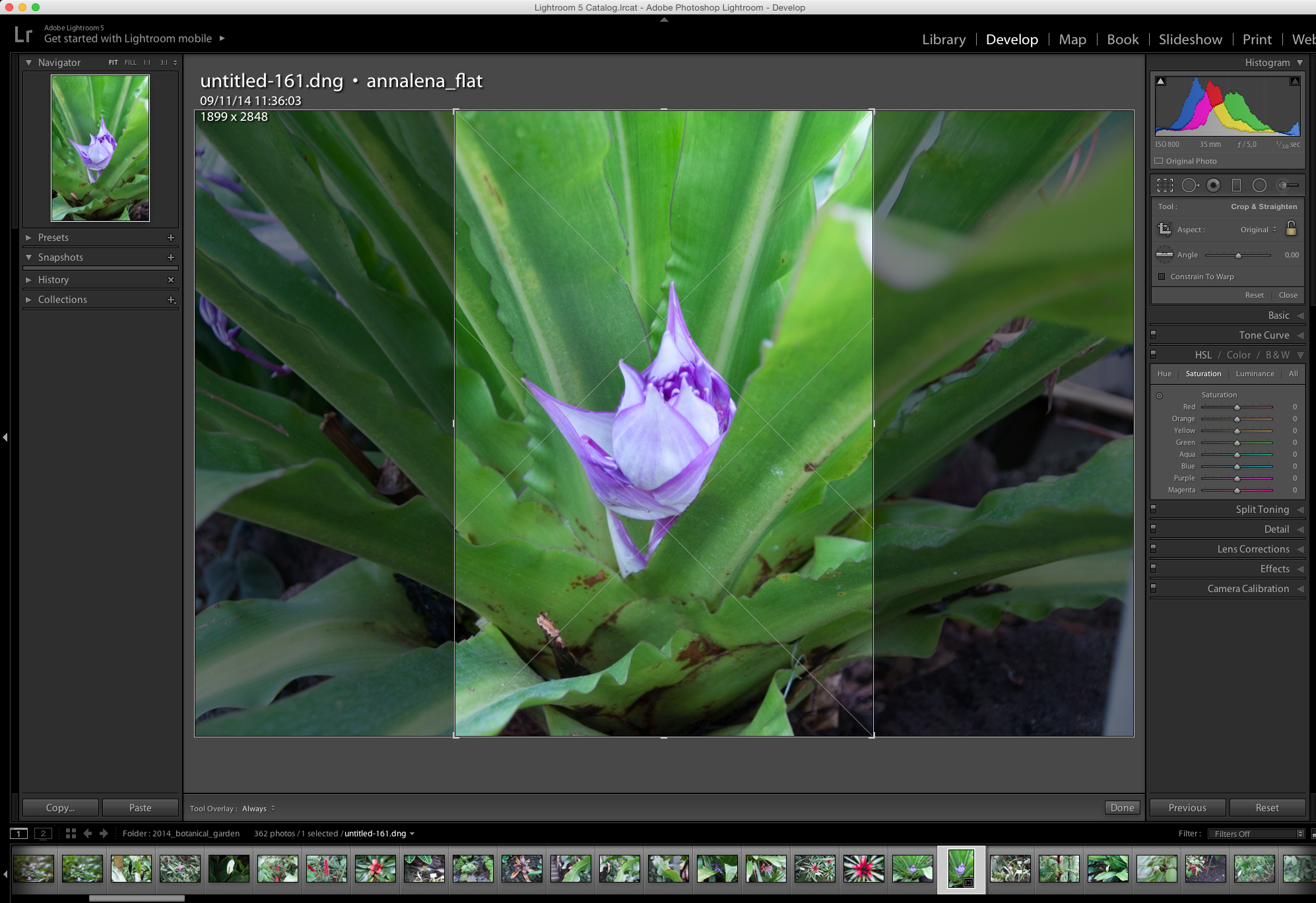 lightroom QuickTipp